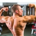 Solider Muskelaufbau mit Aminosäuren & BCAAs