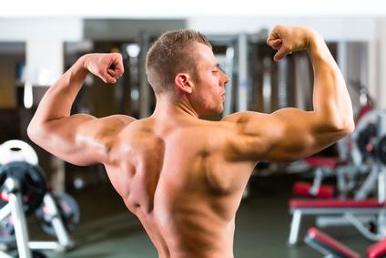 Aminosäuren Muskelaufbau
